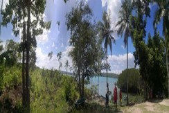 Beach lot for Sale in Badian, Cebu