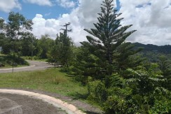 Residential Lot  inside Subdivision in Riverdale Pit-os Talamban
